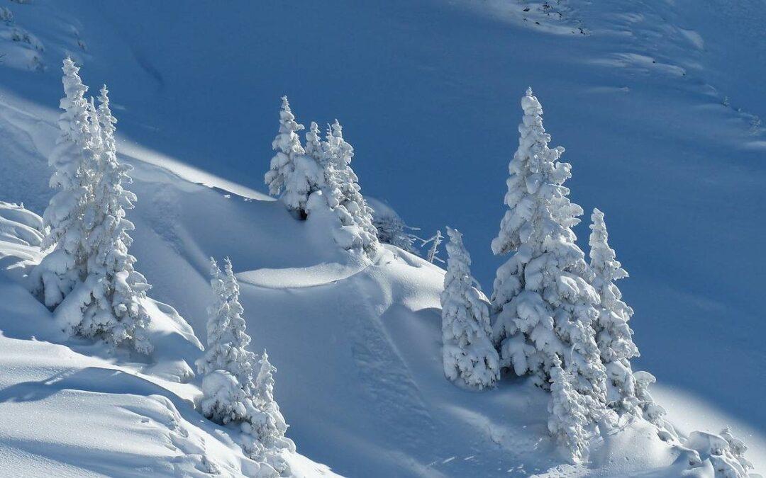 """Zabawy """"Biedronek"""" na śniegu ☃️❄"""